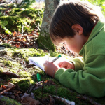 Drawing on Nature: Art in the Woods—Spring class for ages 9-12